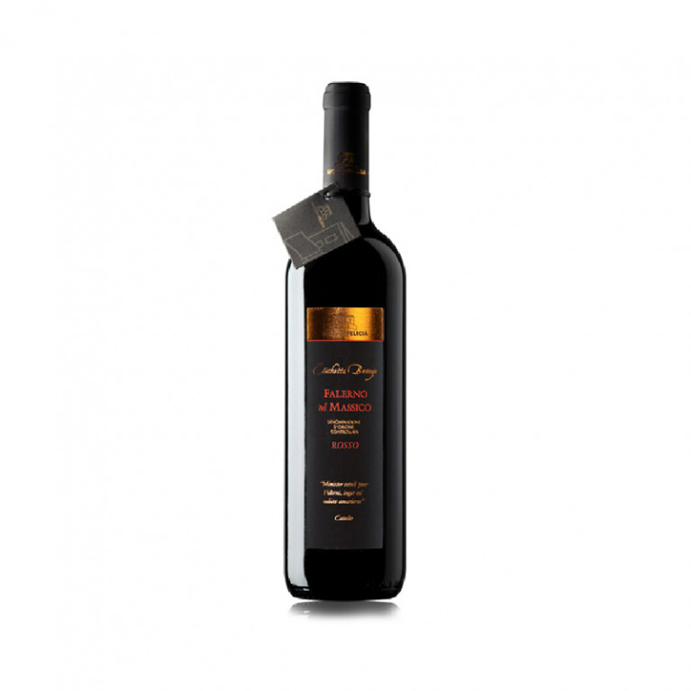 """Bottiglia Falerno del Massico """"Etichetta Bronzo"""" rosso DOC 2009"""