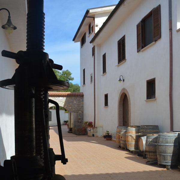 Cantina Monti Cecubi, Itri LT
