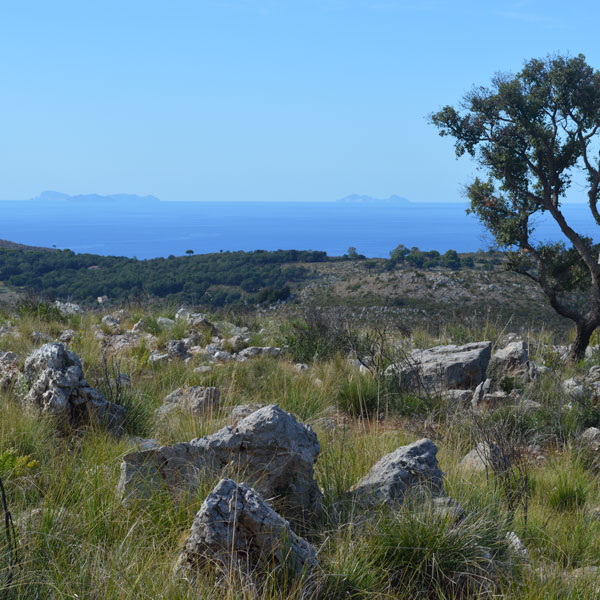 Territorio Monti Cecubi, Itri LT